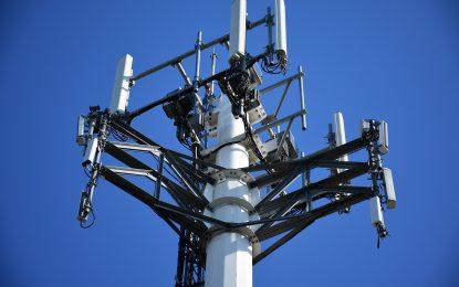 Sfruttano una falla nella rete telefonica per ripulire i conti correnti