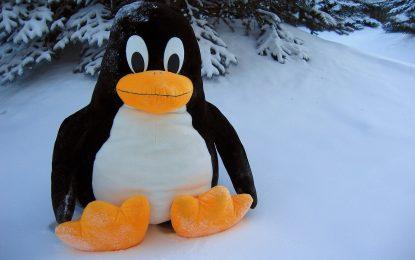Linux può essere compromesso da una query DNS