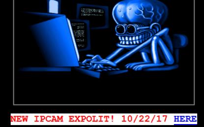 Aspiranti pirati vogliono farsi la botnet, ma diventano… bot!