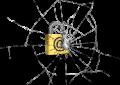 Una (altra) falla nel password manager offerto con Windows