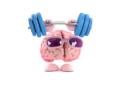 Brain Food: più di 5.000 siti infettati con uno script PHP