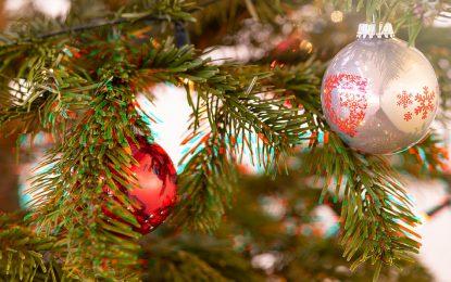 Fatevi un regalo di Natale: disinstallate Flash!