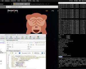 Cina: server esposto su Internet.. coi dati di cittadini schedati