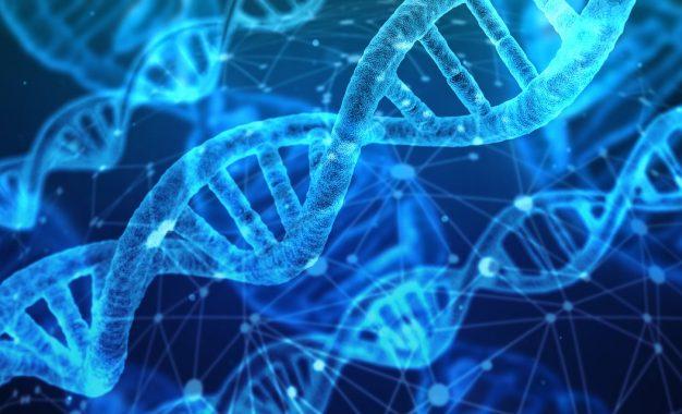 Attacco alle app Web per il sequenziamento del DNA