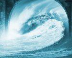Tsunami Google