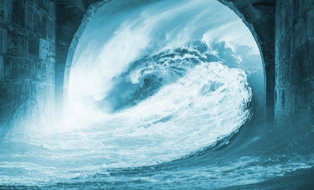 Tsunami: il software di sicurezza targato Google diventa open