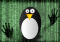 Attacchi DNS poisoning sfruttano un bug di Linux del 2008